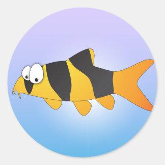 Peixes legal - loach do palhaço adesivo