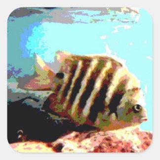 Peixes listrados adesivo em forma quadrada
