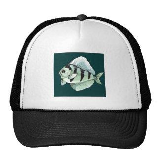 Peixes listrados azuis bone