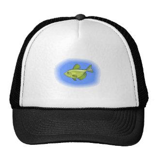 Peixes listrados verdes boné