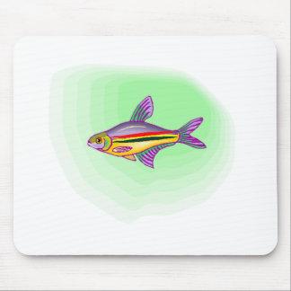Peixes Tetra roxos