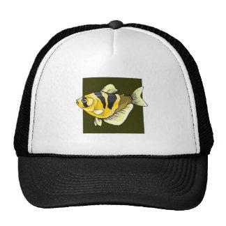 Peixes tropicais amarelos boné