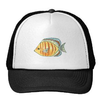 Peixes tropicais bones