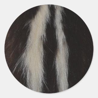 Pele da jaritataca listrada adesivo redondo