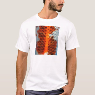 Pele dos peixes de Koi Camiseta