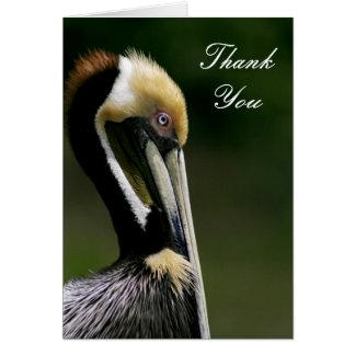 Pelicano - cartões de agradecimentos