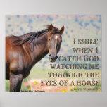 Pelos olhos de um cavalo posters