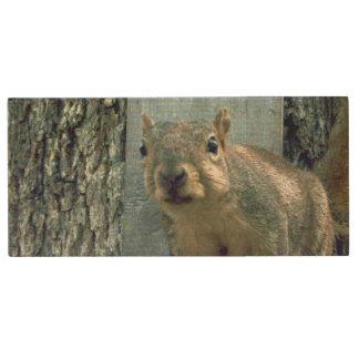 Pen Drive De Madeira Movimentação do flash do esquilo
