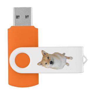 Pen Drive Equipe Barkley 16 de USB 3,0 do giro de USB GB de