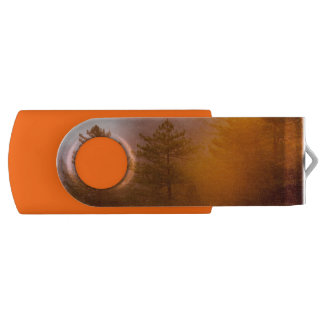 Pen Drive Giratório Floresta dourada da corriola