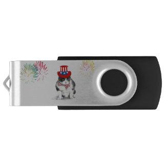 Pen Drive Movimentação do flash de USB que caracteriza Felix