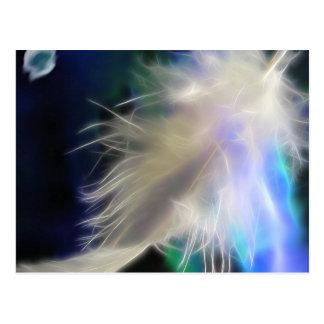 Pena do anjo, cartão