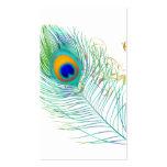 Pena do pavão de PixDezines/cor diy do fundo Cartões De Visita