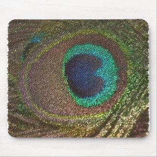 pena do pavão (imagem digital) mouse pad