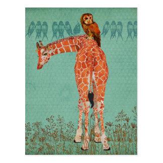 Penas ambarinas do girafa & da coruja cartão postal