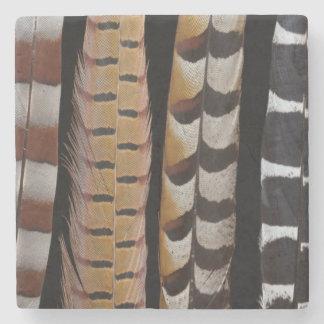 Penas de cauda do faisão porta copos de pedras