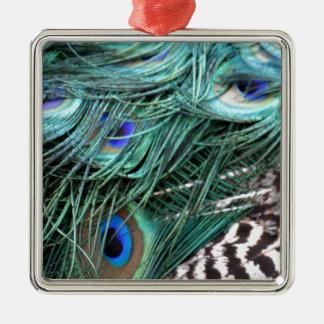 penas de cauda esverdeados do pavão ornamento quadrado cor prata