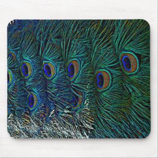 Penas do pavão mouse pad