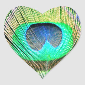 Penas do pavão na turquesa adesivo coração