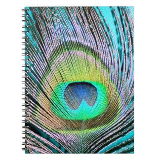 Penas do pavão na turquesa cadernos espiral