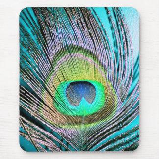 Penas do pavão na turquesa mouse pad