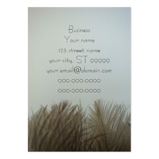 Penas escuras da avestruz em um fundo claro cartões de visita