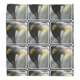 penguin-22.jpg faixa de cabeça