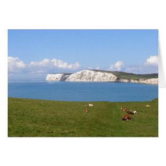 Penhascos brancos da ilha do Wight Cartão