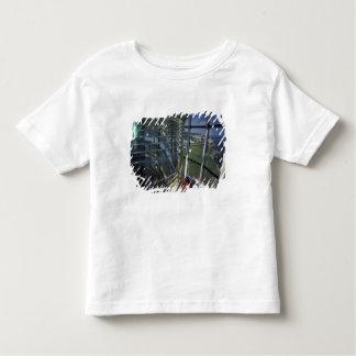Península de America do Norte, Canadá, Quebeque, Tshirt
