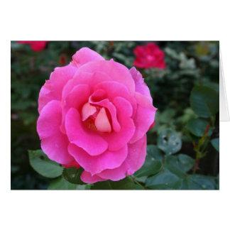 Pensamento de você cartão cor-de-rosa cor-de-rosa