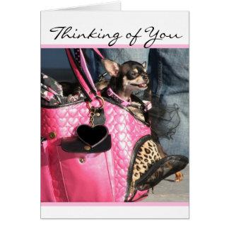 Pensamento de você cartão do cão da chihuahua
