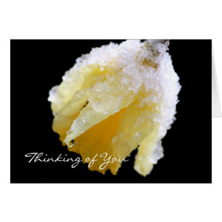 Pensamento de você cartão do Daffodil do inverno