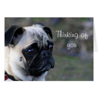 Pensamento de você cartão do pug
