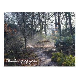 Pensamento de você wintergarden enevoado cartão postal