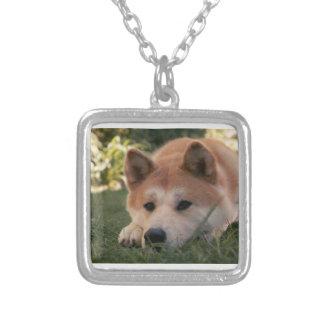Pensamentos profundos do cão de Akita Inu Colar Banhado A Prata