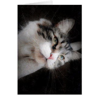 Pense de você o cartão para amantes do gato