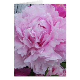 Peônias cor-de-rosa/peônia cartão comemorativo