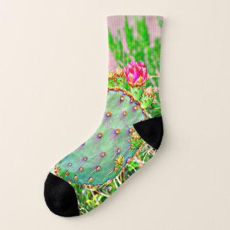Pera espinhosa com as meias cor-de-rosa da flor