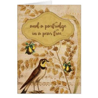 Perdiz em cartões de natal de uma árvore de pera