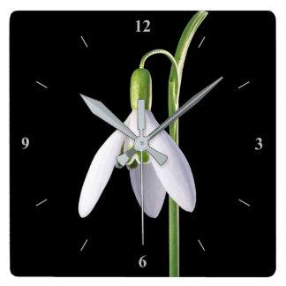 Perfeição de solo relógio quadrado