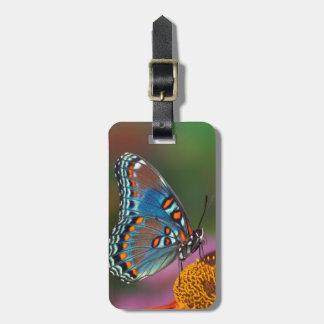 Perfil da borboleta em uma flor etiqueta de bagagem