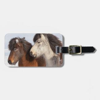 Perfil islandês do cavalo, Islândia Etiqueta De Bagagem
