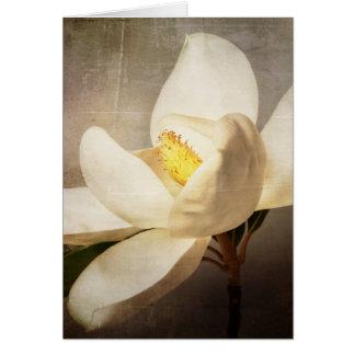 Pergaminho branco de Brown da flor da árvore da Cartão Comemorativo