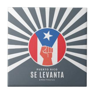 Perito em software Levanta de Puerto Rico
