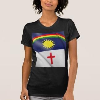 Pernambuco Camiseta