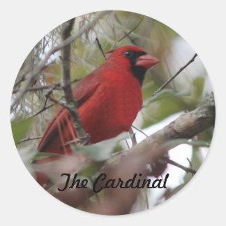 Personalize a foto cardinal agradável adesivo em formato redondo