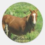 Personalize o cavalo conhecido adesivos redondos