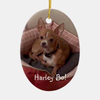 personalize ornamento da árvore de Natal da foto