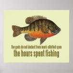Pesca da brema poster