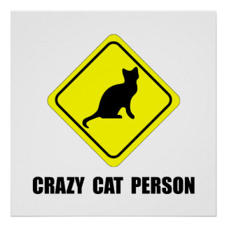 Pessoa louca do gato poster